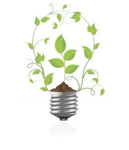 Go Green light Bulb