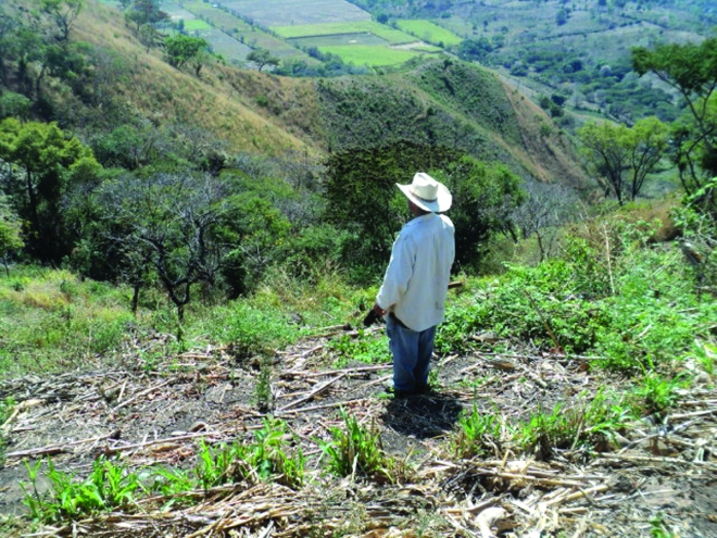 el salvador soil conservation