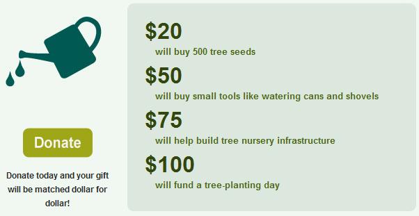 donate to reforest haiti