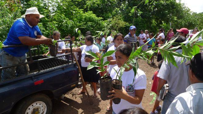 community reforestation el salvador