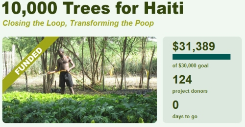 haiti reforestation