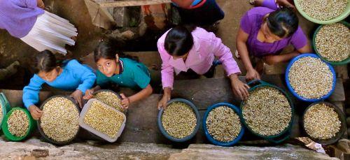 Community members in La Benedicion, Guatemala work together at the mill