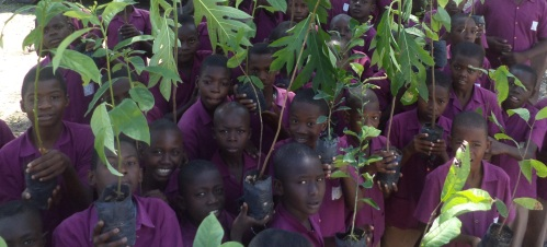 children plant trees in Haiti