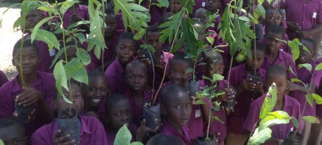 children plant trees in Haiti