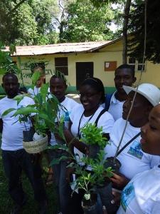 reforestation Haiti