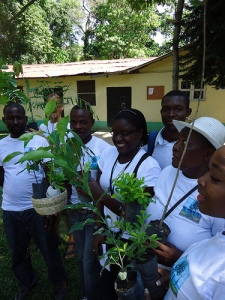 reforestation Haiti