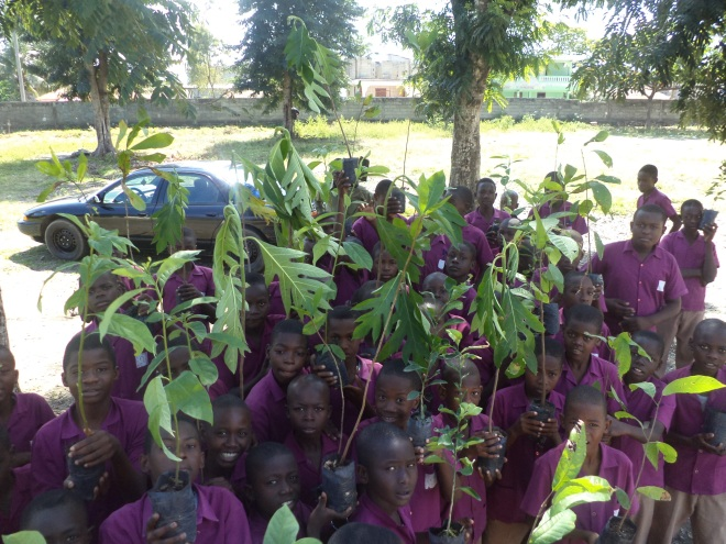 Haitian school children plant trees