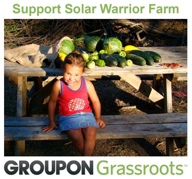 solar warrior farm_Groupon