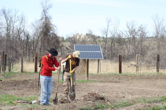solar warrior farm volunteers