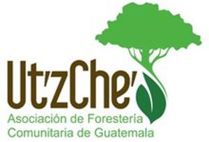 utzche logo