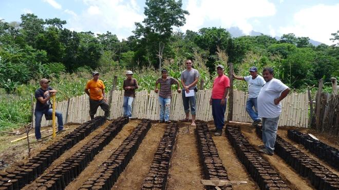 Guatemala reforestation project