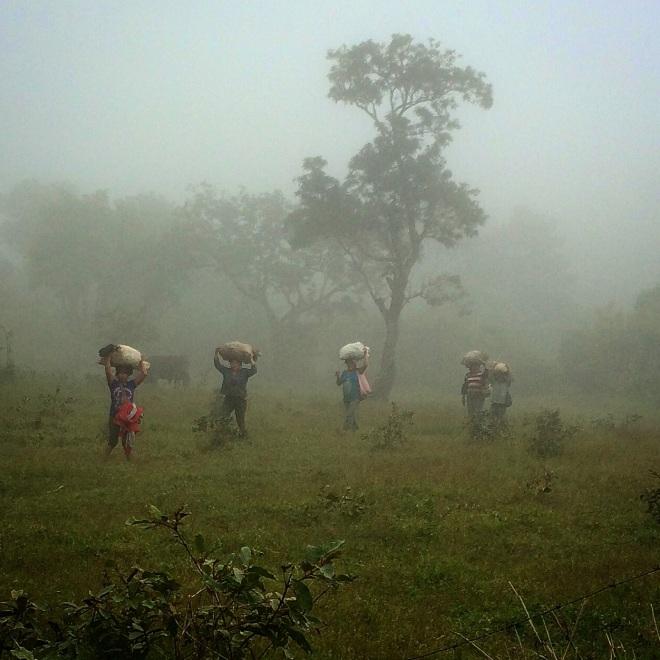Honduras cookstove study