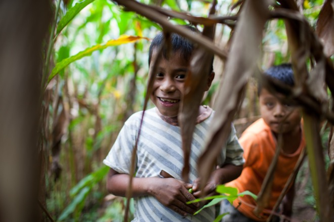 Communities around the world are dependent on healthy forests for their livelihoods.