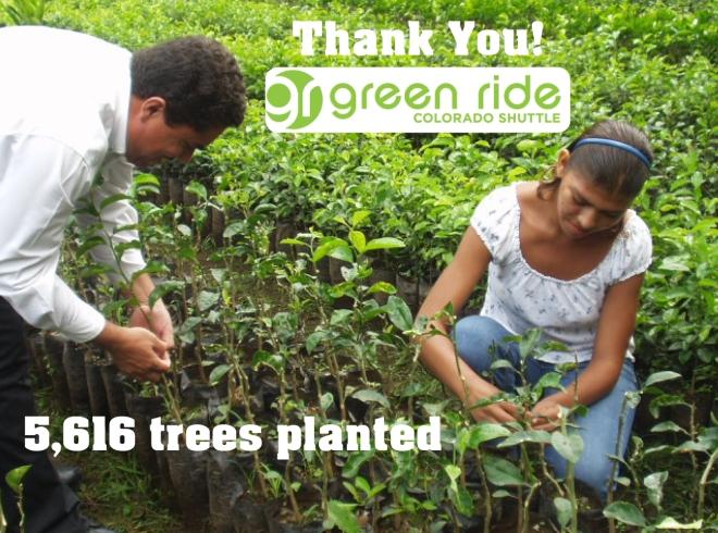 green ride colorado tree planting