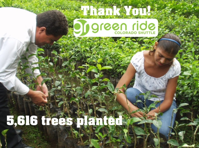 green ride colorado tree planting