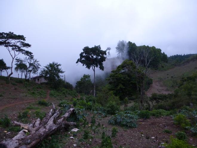 San José de Pané along the Cordillera de Montecillos in central Honduras