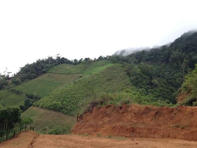 Nicaragua deforestation
