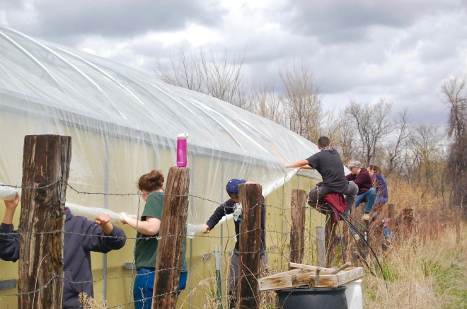Students fix green house