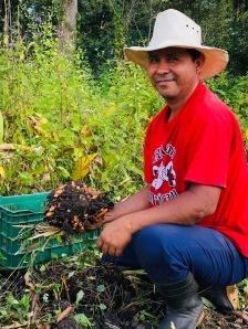 Nicaraguan farmer
