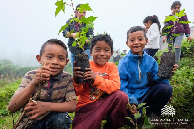 kids_trees.jpg